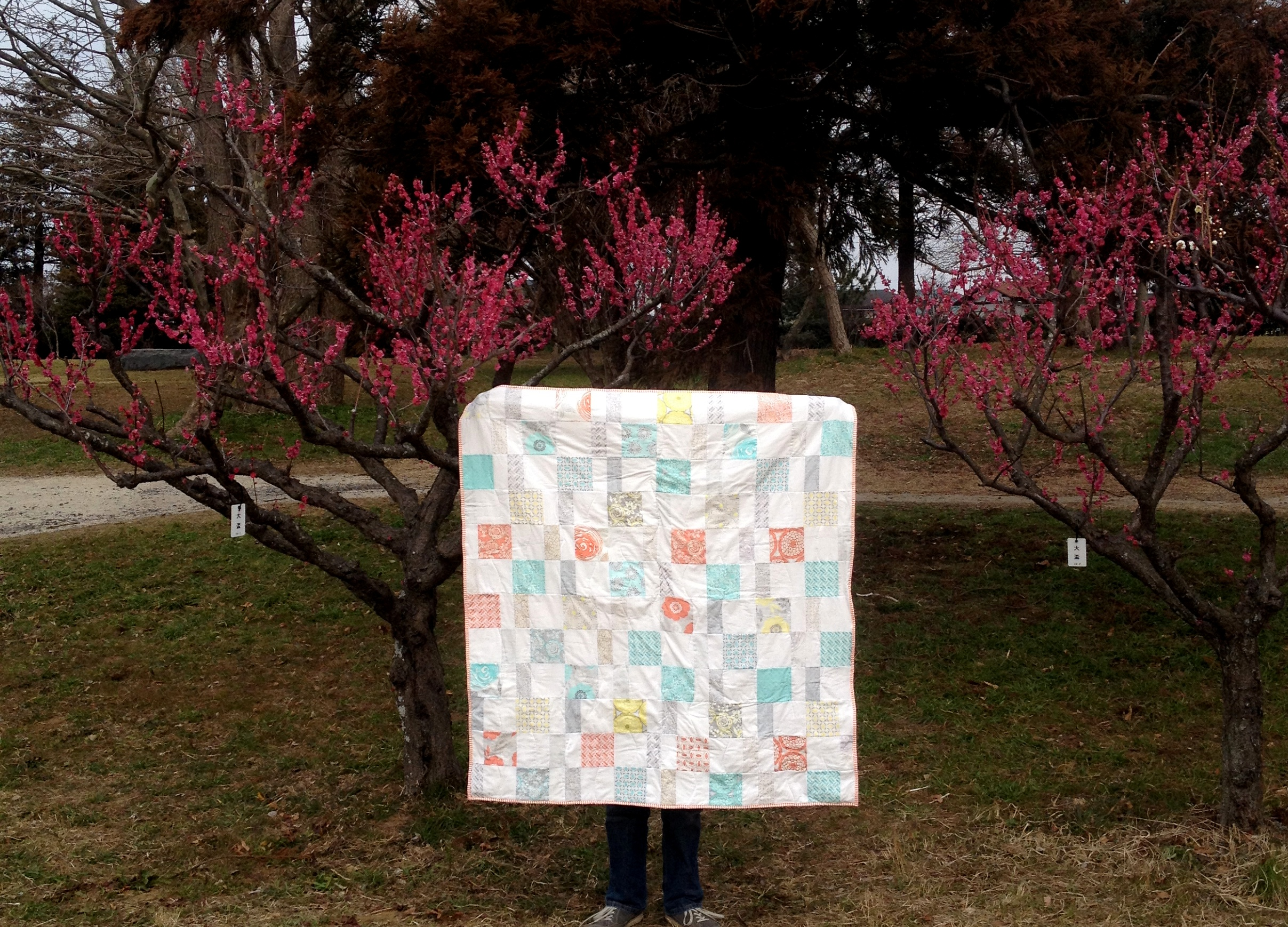 Charm pack cherry quilt blossoms