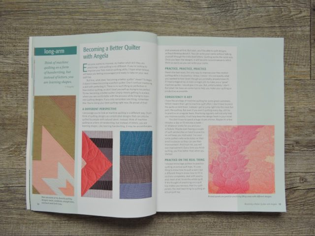 The Ultimate Guide to Machine Quilting Angela Walters