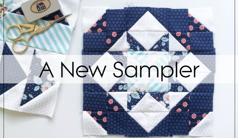 A New Sampler Quilt, Why Not!