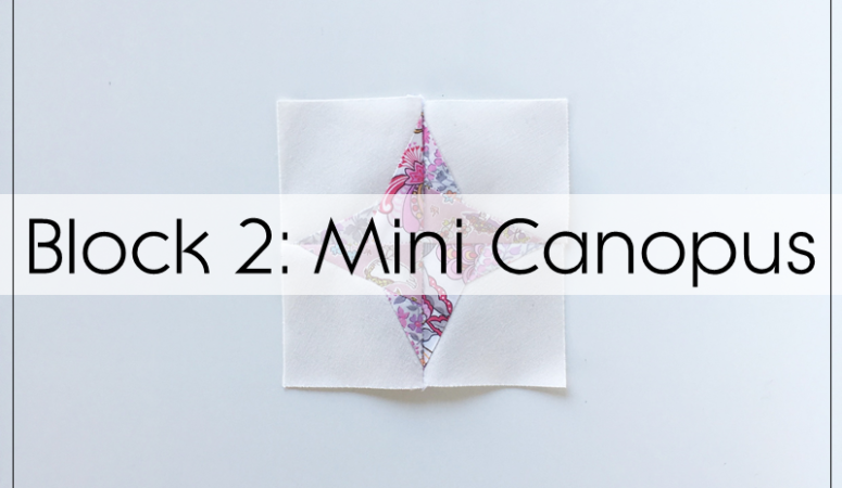 Milky Way Sampler: Mini Canopus