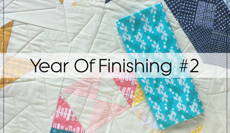 Year Of Finishing: Project 2 – Modern HST Sampler